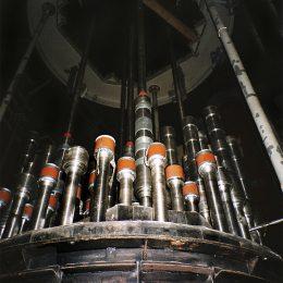 mecanismos-control-foto-organo-reactor-4