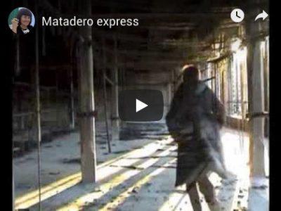 Matadero-express-2013